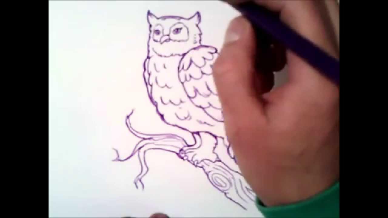 Top come disegnare un gufo | come disegnare un gufo passo dopo passo  SB23