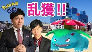 【ポケモンGO】フシギダネ乱獲!イベント中の扇町公園【楠見の青春】 thumbnail