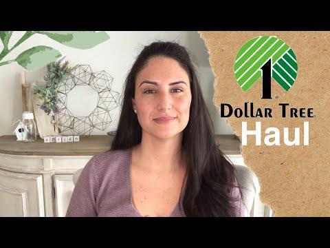 NEW Dollar Tree Haul