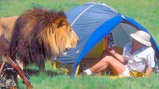 15 Times Wild Animals Surprised Photographers