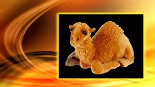 Dromedary Camel Stuffed Animal