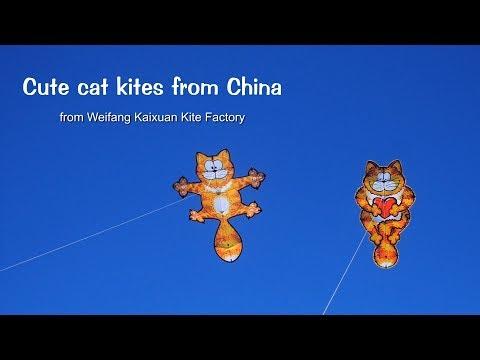 Cute cat kites from China