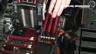 Airflow Pro Dynamic Temperature and Activity Display for Dominator Memory