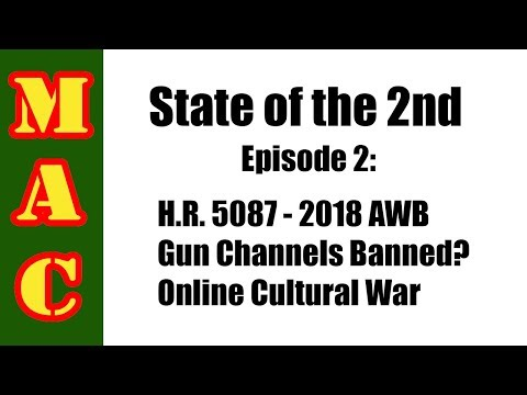 State of the 2nd: AWB of 2018, YouTube Gun Channel Ban, Online Cultural War