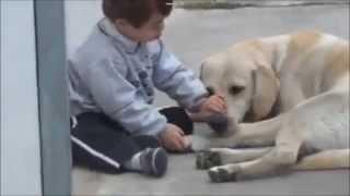 Мальчик с синдромом Дауна и нежность собаки