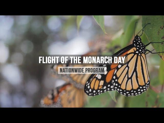 ALUS Norfolk - Flight of the Monarch Butterflies