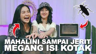 Download MAHALINI SAMPAI JERIT MEGANG HEWAN INI! KEISYA WHAT'S IN THE BOX!