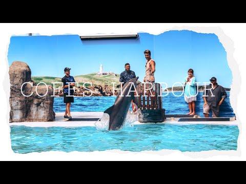 Unsere ersten Pelikane // Coffs Harbour // Work and Travel // Australia // Backpacking Vlog 🇦🇺