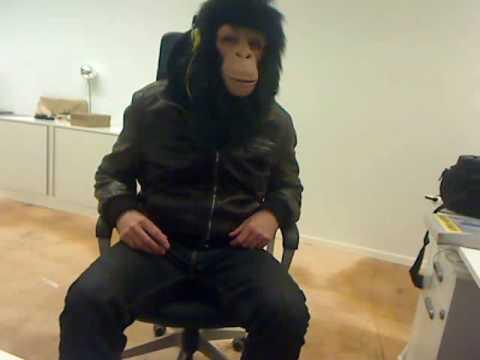 Agence Octopus - Monkey Work