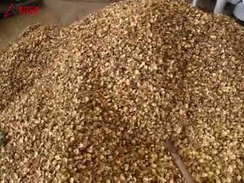 Inca inchi Seeds Dehuller Machine|Hemp Seeds Sunflower Seeds Hemp Seeds Sheller Machine