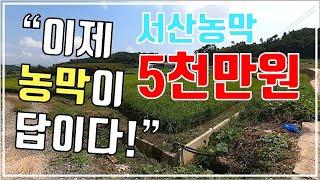 (매물36) 서산 부석면 토지와 농막