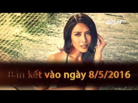(VTC14)_Thí sinh Hoa hậu Biển 2016 không được xăm hình, phẫu thuật thẩm mỹ