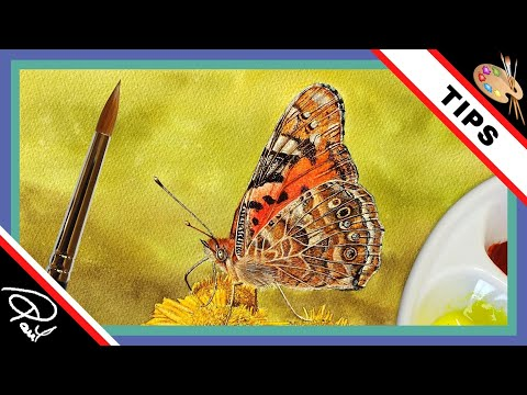 Watercolour Painting Tips & Tecnhniques – How To Paint The Wing of a Butterfly