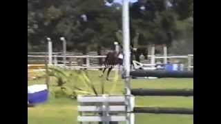 Lucky Sign 26 year old ex racehorse teaches teenager to jump