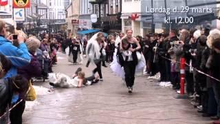 City Vejle Brudeløb 2014