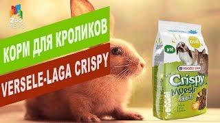 Корм для кроликов Versele-Laga CRISPY MUESLI   Обзор корма для кроликов Versele-Laga CRISPY MUESLI