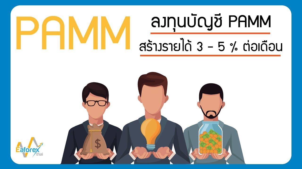 PAMM ทางเลือกในการลงทุนในตลาด Forex ลงทุนง่าย ปันผลเร็ว | www.Eaforexthai.com