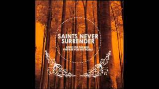 Watch Saints Never Surrender Our Actions video