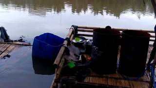 Banjir di Jakarta Tradisi 5 tahunan apa warga jakarta yg kurang peduli lingkungan