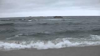 바다에 뛰어든 파나소닉 방수캠코더 HX-WA2