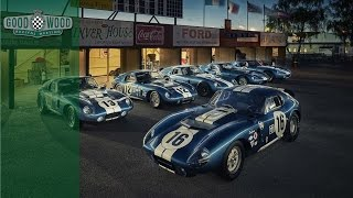 Sunset with Shelby Daytona Cobra Coupes at Goodwood Revival