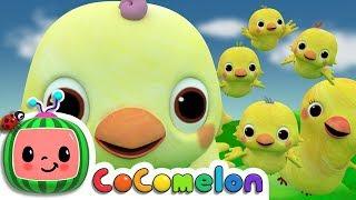 Five Little Birds 2    CoComelon Nursery Rhymes & Kids Songs