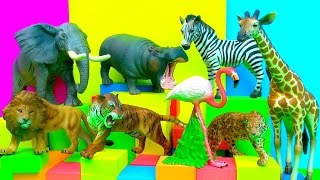 Happy Cute Zoo Animals NEW with Footprints and SFX Toy Review - FUN Ending