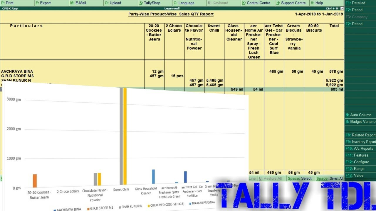 Tally ERP9 TDL 2018 | Customer Wise Stock Report - LEARN WELL +