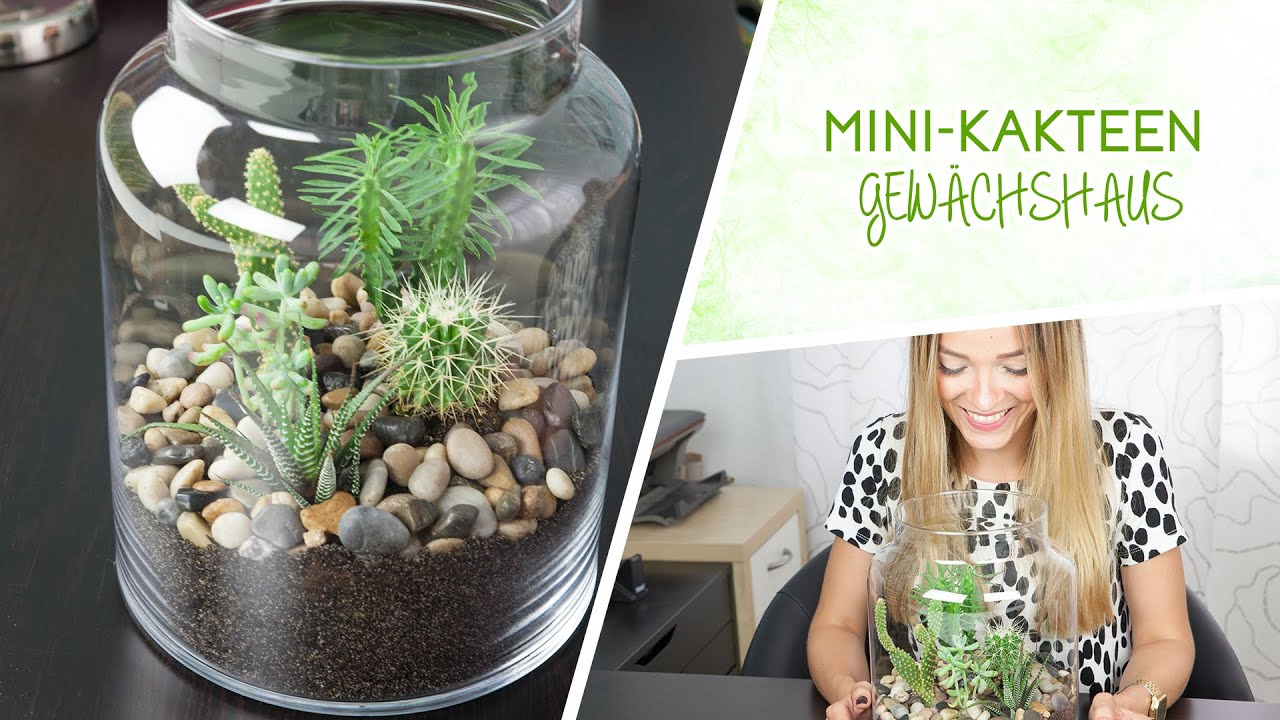 mini kakteen terrarium diy youtube. Black Bedroom Furniture Sets. Home Design Ideas