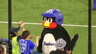 つば九郎スワローズファンにはグータッチベイスターズファンには塩対応