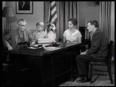 """Download Lassie - Episode #228 - """"The Swallows of Los Pinos"""" - Season 7 Ep. 9 - 11/06/1960"""