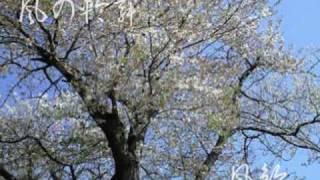 アコースティック・ユニット「風鈴」 Guitar・作曲:奏丸-Kanamaru/Voca...