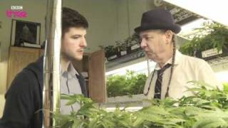 The World's Largest Cannabis Dispensary - Cannabis: What's The Harm? Preview - BBC Three