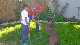 عمو صابر وكلبة شوشو والبحث عن بطبوطة - amo saber the and his dog shosho searching for ducky