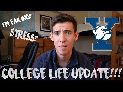 MY LIFE AT YALE // UPDATE