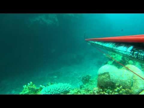 Chasse sous marine à Ouvéa part1