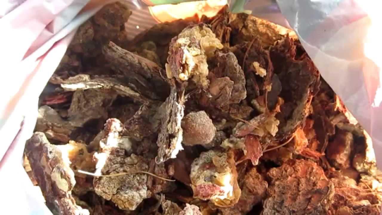 Как варить серу из лиственницы в домашних условиях