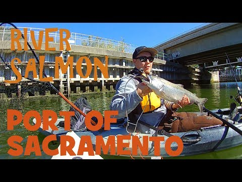 Port Of Sacramento (Barge Canal) Salmon Fishing On My Hobie Revolution