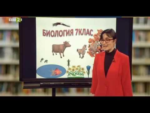 31 СУЧЕМ - урок по Биология за 7 клас на г-жа Албена Йочкова