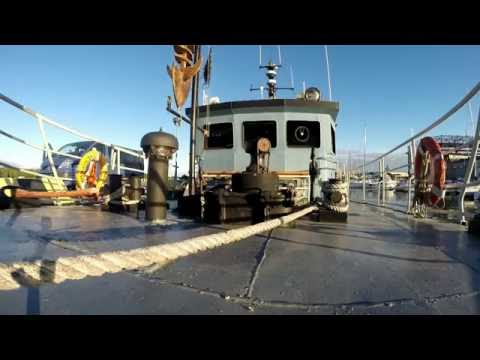 Diving Baltic (18.09.2016)