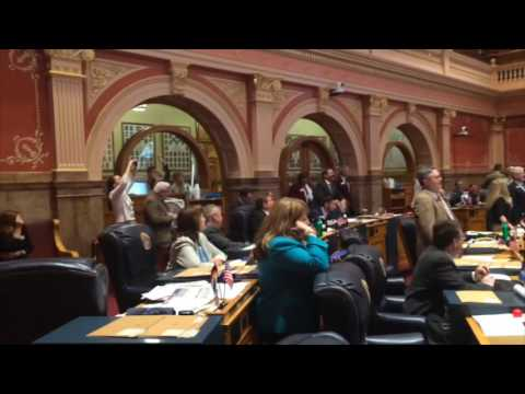 Brother Virginia Brings Country Music to The Colorado State Senate