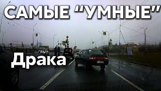 """Подборка САМЫХ """"УМНЫХ"""" водителей #374"""