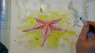 Рисуем поэтапно для начинающих морскую звезду