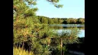 Природа села Пашково, Пензенской области(Этот край стал мне практически родным! Всем, кто имеет отношение к этому месту, посвящается. В видео мои..., 2013-10-07T10:44:43.000Z)