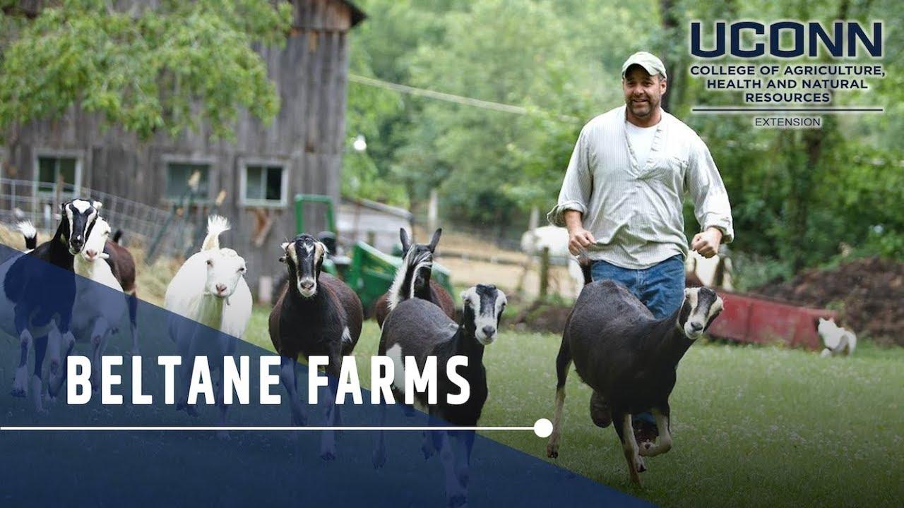 Home - Beltane Farm