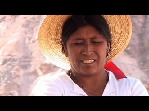 Distantes   Quebrada de Camiña