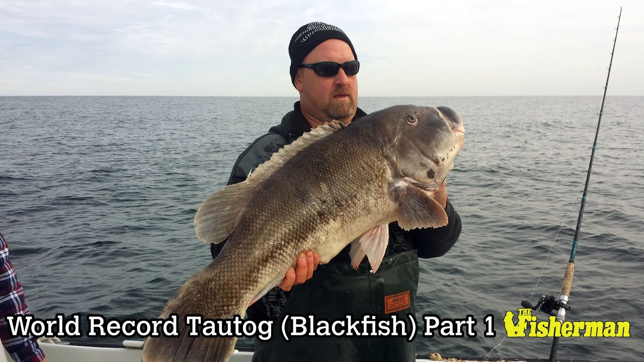 Image result for ken westerfield world record blackfish