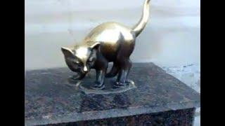 Смотреть видео Кошки Санкт-Петербург онлайн