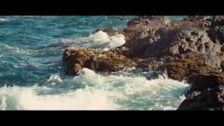 Cicada - 匯流向海 into the Ocean《邊境消逝》