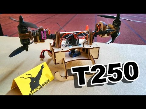T250 RC Vehicle by Foamie Ninja - TheRcSaylors